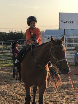 Horse Camp 101
